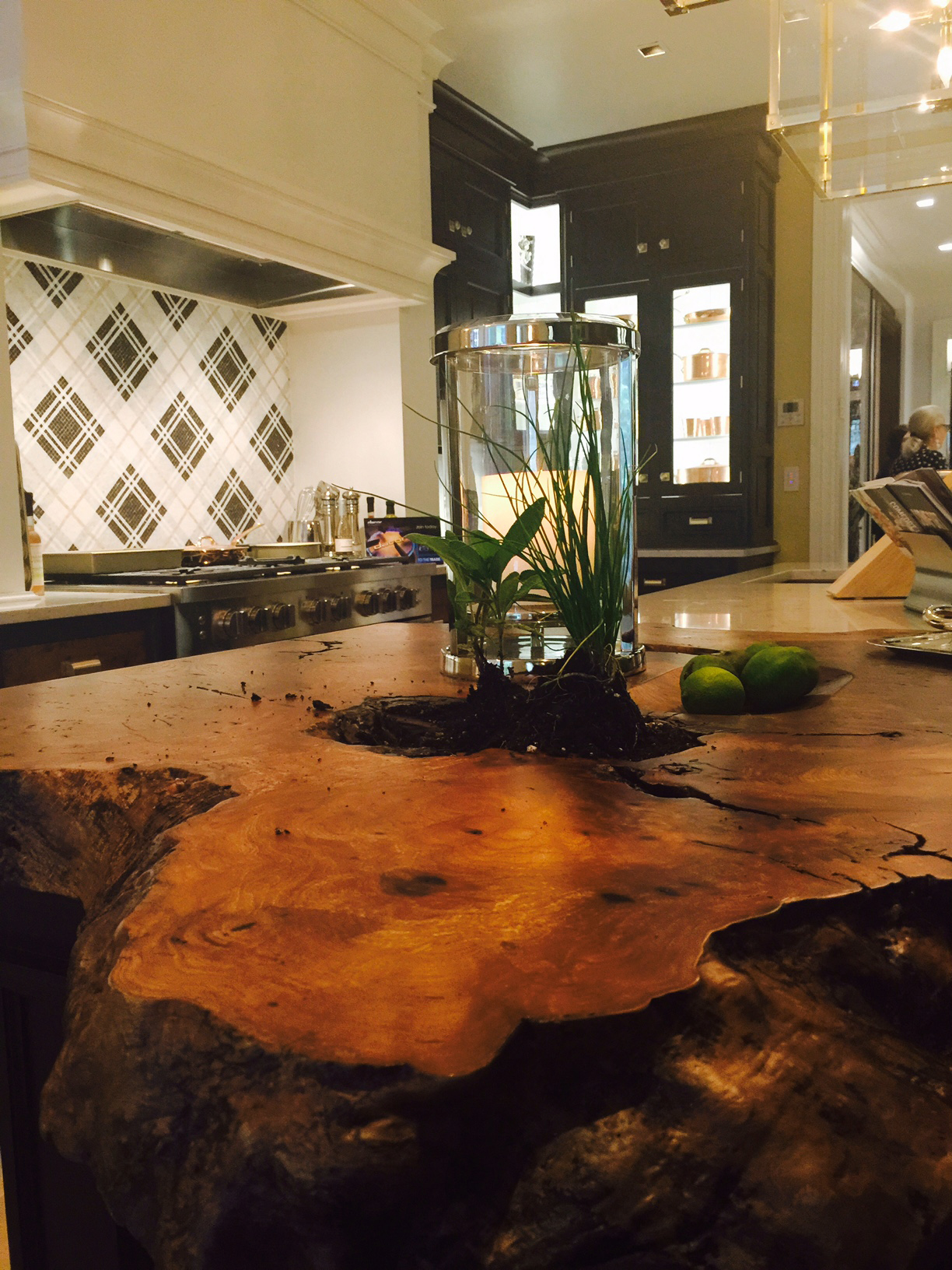 Herb garden in deep crevice of Live Edge countertop in 2015 Kips Bay Decorator Show House